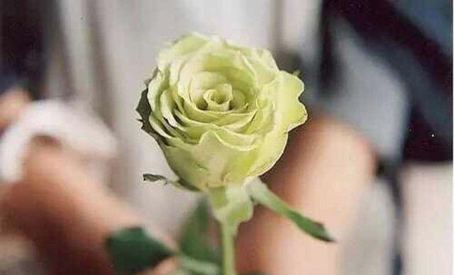 :长沙今日团购:【妍.美人娲美容养生连锁】细胞注氧水疗男女不限,提供免费WiFi