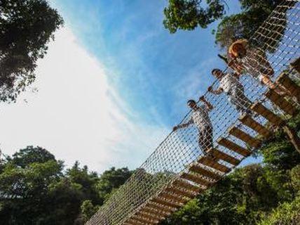 南丹山森林王国门票 玻璃滑道 树冠廊桥a或b段 森林欢乐谷8选3票(成人