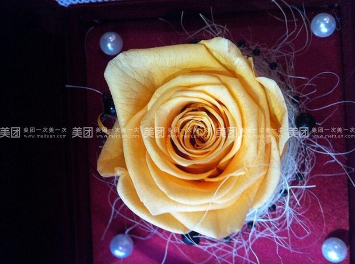 微信花朵头像图片大全 玫瑰
