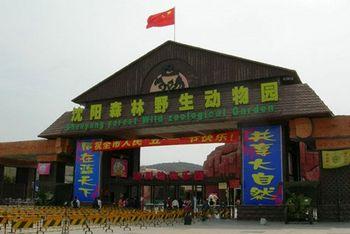 【浑南区】沈阳森林动物园门票+熊猫魔幻剧场套票(成人票)-美团
