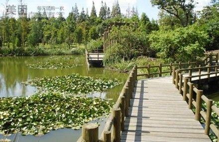 【北京滨江森林公园真人cs野战场团购】滨江森林公园图片