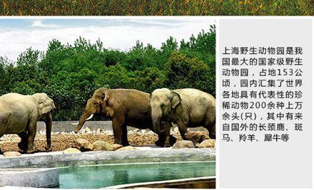 【北京上海野生动物园套票团购】上海野生动物园套票