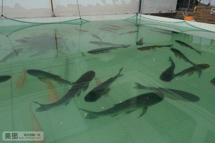 千岛湖鱼掌门食府