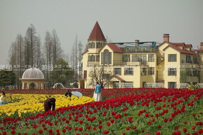花卉世界(世博馆会非洲馆),东部花海,民俗表演,玫瑰庄园,农家动物园
