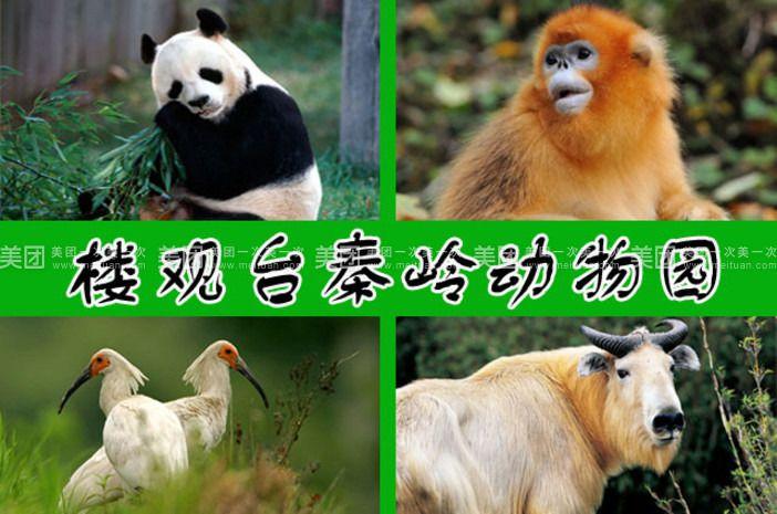楼观台秦岭动物园,(又称秦岭四宝基地,百花珍兽园).