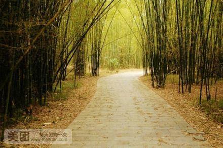 【北京湖心岛旅游风景区增城龙眼套餐团购】中易旅游