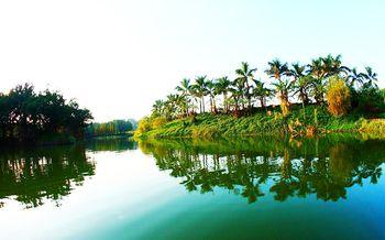 【南海区】南海大湿地主题公园-美团