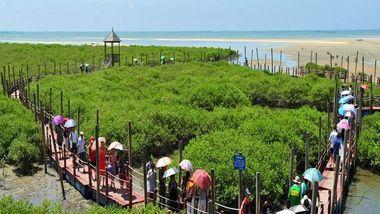【银海区】金海湾红树林-美团