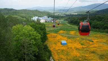 【尚志市】亚布力阳光度假村世界第一滑道成人票-美团
