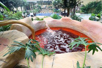 【南彩镇】北京松鹤建国培训中心温泉门票+搓澡成人票-美团
