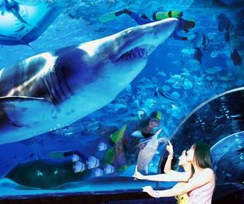 【多区域】圣亚海洋世界五馆套票+星海公园快艇成人票-美团
