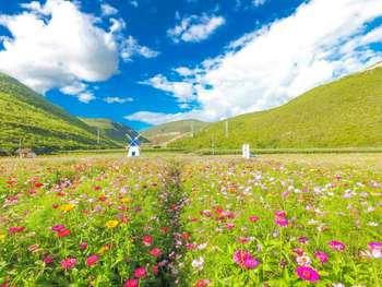 【古城区】风情花园-美团