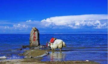 【兰州出发】青海湖、塔尔寺、土族风情园2日跟团游*含土族风情园-美团