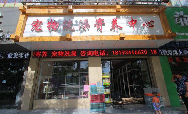 龍鑫宠物店·宠物洗澡寄养中心宠物洗澡,仅售23.8元!价值30元的宠物洗澡1次,提供免费WiFi。