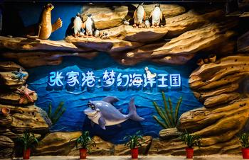 【吾悦广场】张家港梦幻海洋王国门票亲子票(1大1小)-美团
