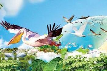 【番禺区】长隆飞鸟乐园-美团