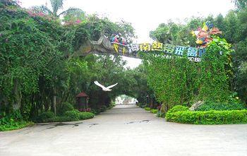 【定安县】海南热带飞禽世界-美团