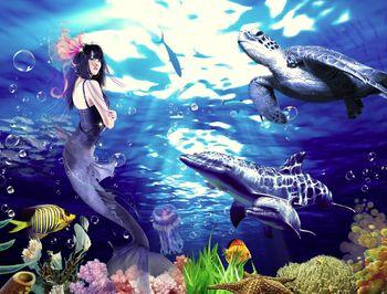 【工体】富国海底世界家庭票(2大1小)(含俄罗斯美人鱼和海狮表演)-美团