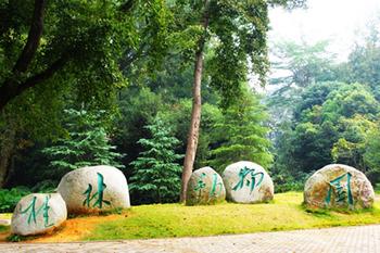 【七星区】桂林动物园-美团