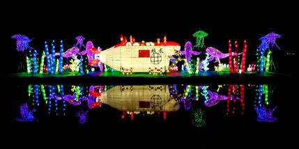【云岗】南宫五洲植物乐园艺术灯光夜套票成人票-美团