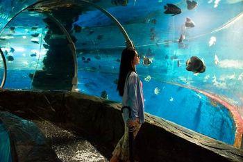 【银海区】北海海洋之窗-美团