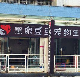 黑眼豆豆宠物生活馆
