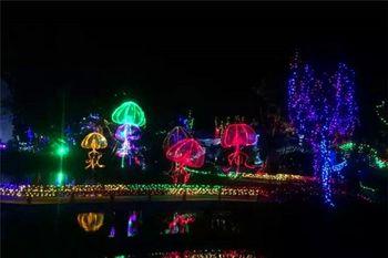 【和林格尔县】和林南山公园首届国际花园灯光节门票成人票-美团