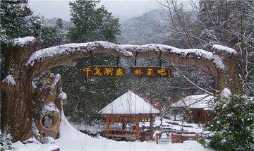 【杭州出发】千岛湖纯玩1日跟团游*含车含票 往返接送-美团