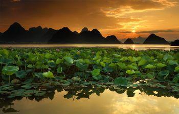 【丘北县】普者黑风景区(包含观音洞、火把洞)+游船+天鹅湖成人票-美团