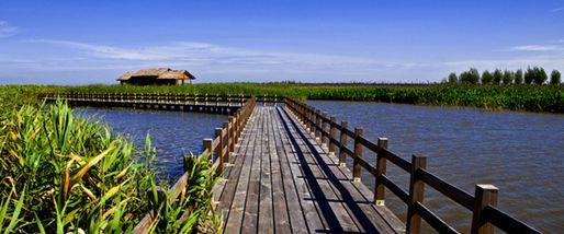 【慈溪市】杭州湾湿地公园门票+景交+船票(成人票)-美团