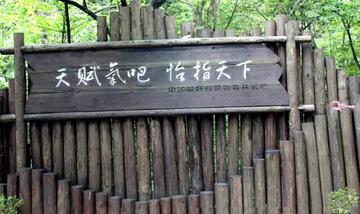 【恩施出发】坪坝营原生态旅游区、四洞峡、鸡公山景区纯玩1日跟团游*门票+免费接送+导游-美团