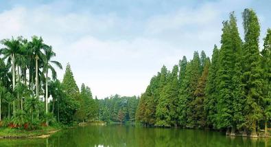 【天河客运站】华南植物园成人票-美团