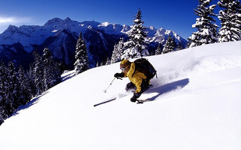 【神农架林区】龙降坪国际滑雪场平日双板全天滑雪票(成人票)-美团