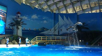 【常青花园】武汉海昌极地海洋世界2大1小家庭年卡-美团