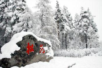 【漠河县出发】北极村旅游区2日跟团游*极光圣诞,美梦成真!-美团