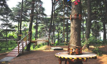 【红山路】红山森林动物园成人年卡-美团