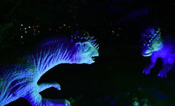 【南坪】重庆游乐园暗夜星球恐龙世界主题乐园(成人票)-美团