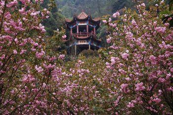 【苏仙区】王仙岭旅游风景生态公园-美团