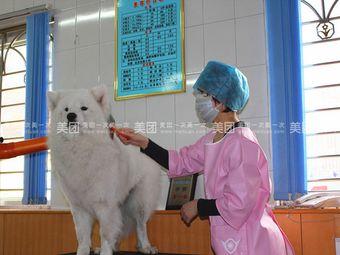 正定县疫控中心宠物医院