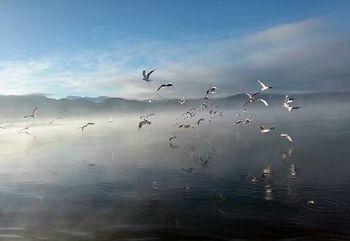 【泸沽湖】泸沽湖游船成人票-美团