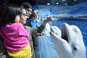 【滨海新区】(深度探索之旅)天津海昌极地海洋公园亲子票(2大1小)-美团