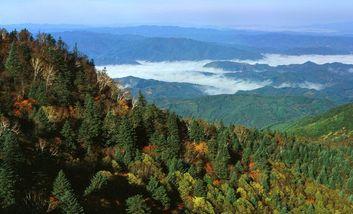 【新宾满族自治县】岗山国家森林公园-美团