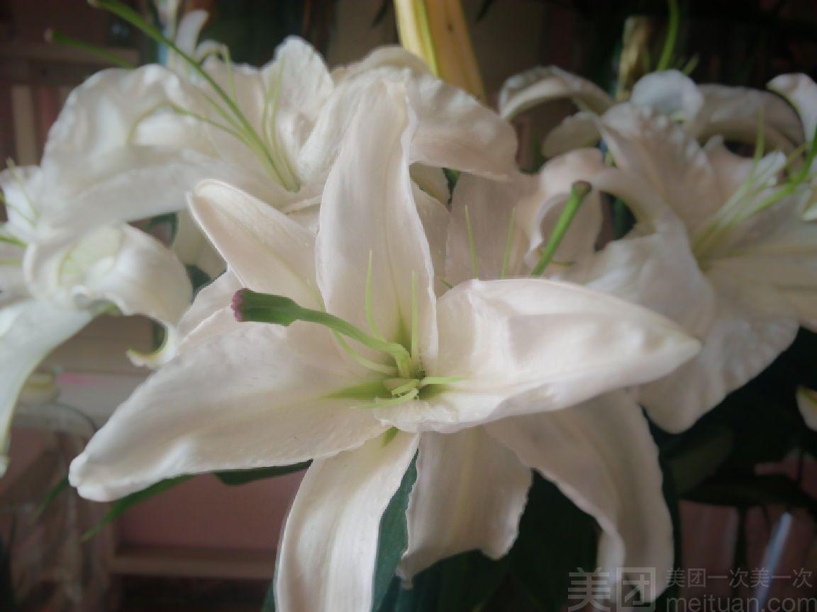 玫瑰园鲜花婚庆-美团