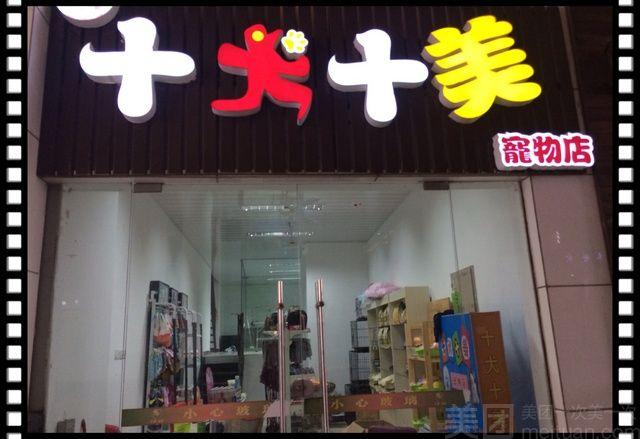 :长沙今日团购:【十犬十美宠物店】十犬十美宠物店洗澡
