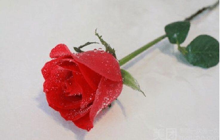 清丽花店(郑汴路店)-美团