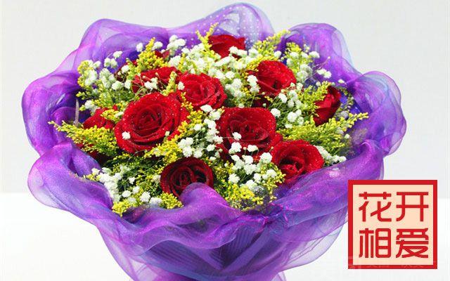 :长沙今日团购:【花开相爱鲜花速递】11支红玫瑰 紫色包装