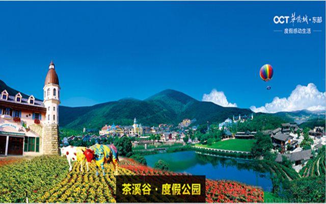 东部华侨城茶溪谷-美团