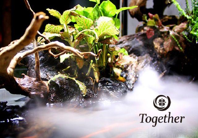 Together Massage(天山店)-美团