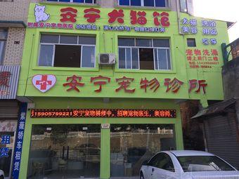 安宁宠物医院