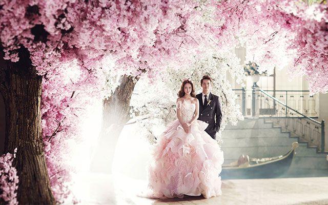 米兰尊荣婚纱摄影会馆-美团